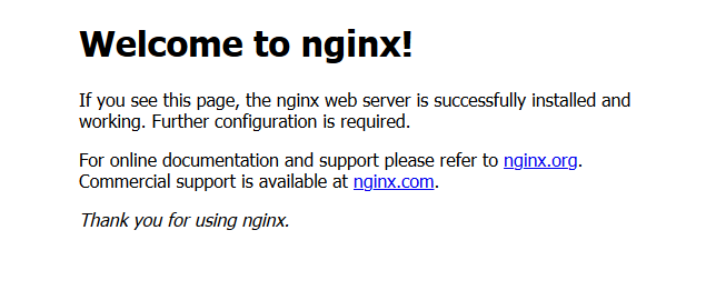 Nginx Web Browser Status